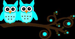 identical owls